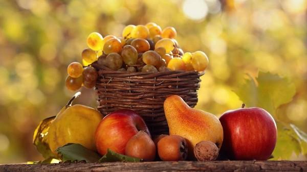 Recherche fruits de saison